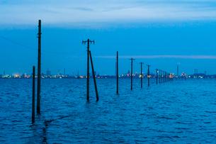 東京湾に伸びる江川海岸の海中電柱の写真素材 [FYI01821963]