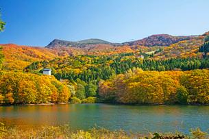 秋の蔵王の写真素材 [FYI01822099]