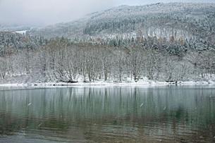 初冬の鴫の谷地沼の写真素材 [FYI01822119]