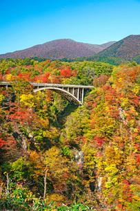秋の鳴子峡の写真素材 [FYI01822212]