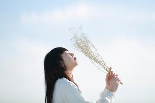 屋上で白いドライフラワーを空に掲げる女性の写真素材 [FYI01822905]