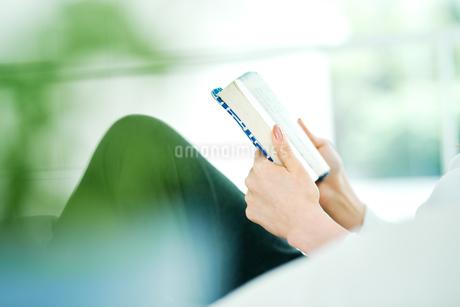 読書をする女性の写真素材 [FYI01823026]