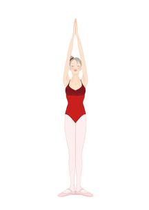赤いレオタードでレッスンする女性のイラスト素材 [FYI01823140]