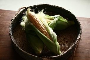 トウモロコシと籐籠の写真素材 [FYI01823212]