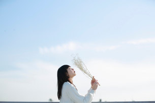 屋上で白いドライフラワーを空に掲げる女性の写真素材 [FYI01823231]