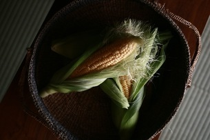 トウモロコシと籐籠の写真素材 [FYI01823503]