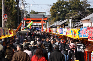 椿祭りの写真素材 [FYI01823796]