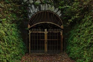 旧別子銅山第三通洞入口の写真素材 [FYI01824054]