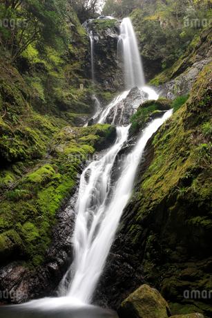 雨乞の滝 雌滝の写真素材 [FYI01824081]