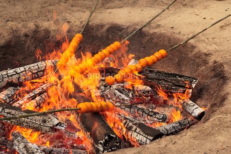 御火焚祭(おみかん焼き)の写真素材 [FYI01824254]