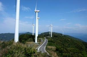 佐田岬半島の風車の写真素材 [FYI01824278]
