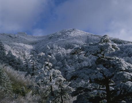 雪の剣山 徳島県の写真素材 [FYI01824441]
