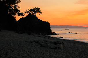 桂浜と朝焼けの写真素材 [FYI01824499]