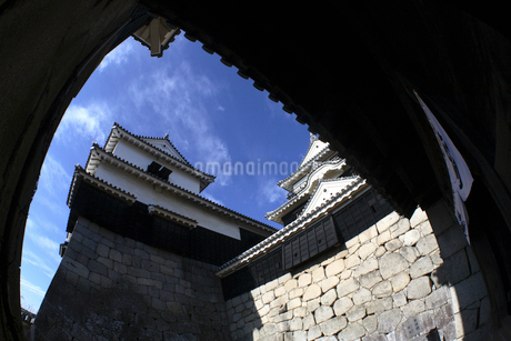 松山城の写真素材 [FYI01824516]