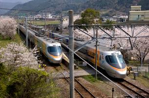 石鎚山駅の特急列車と桜の写真素材 [FYI01824679]