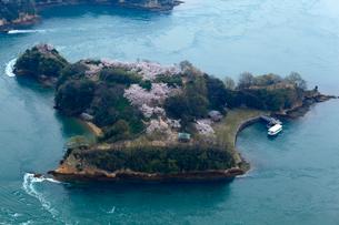 能島の桜 空撮の写真素材 [FYI01824940]