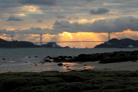 来島海峡大橋と朝の光の写真素材 [FYI01825191]