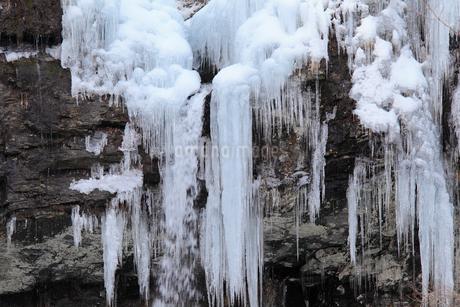 凍てつく氷室の大瀧の写真素材 [FYI01825207]
