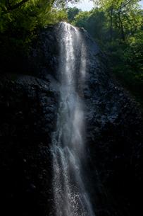 春の白猪の滝の写真素材 [FYI01825212]