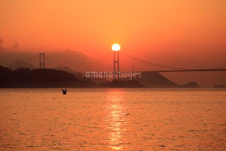来島海峡大橋に昇る朝日の写真素材 [FYI01825500]
