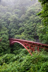 渓谷の赤い橋の写真素材 [FYI01825553]