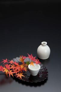 菊型の盆と紅葉と酒器の写真素材 [FYI01825742]