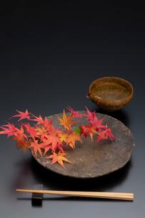焼締の皿と紅葉と酒器の写真素材 [FYI01825779]