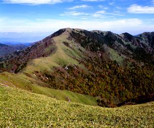 秋の剣山全景の写真素材 [FYI01825938]