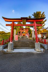 篠山の千本鳥居と言われる王地山稲荷神社の写真素材 [FYI01825971]
