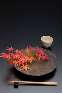 焼締の皿と紅葉と酒器の写真素材 [FYI01825996]