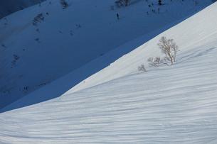 八方尾根の残雪景色の写真素材 [FYI01826011]