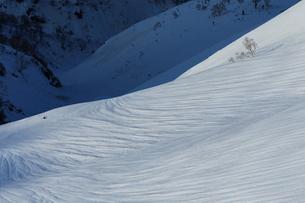 八方尾根の雪解け進む模様の斜面の写真素材 [FYI01826024]