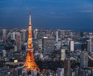 東京タワーと都心の夜景の写真素材 [FYI01826241]