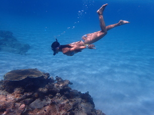 シュノーケルで潜る女性の写真素材 [FYI01827604]