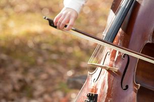 公園でチェロを弾く20代女性の写真素材 [FYI01827981]