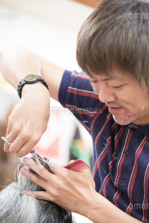 髪をカットする30代男性美容師の写真素材 [FYI01828100]