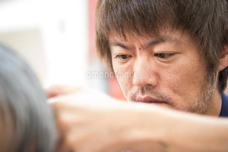 髪をカットする30代男性美容師の写真素材 [FYI01828173]