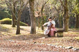 公園でチェロを弾く20代女性の写真素材 [FYI01828235]