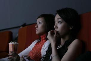 映画を観る2人の女性の写真素材 [FYI01829176]