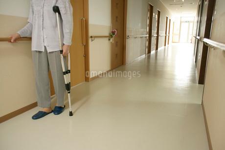 松葉杖を突くシニア女性の写真素材 [FYI01832833]
