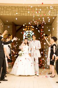 祝福される新郎新婦の写真素材 [FYI01833014]
