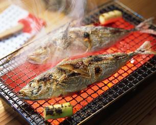 焼き魚(アジ)の写真素材 [FYI01835590]