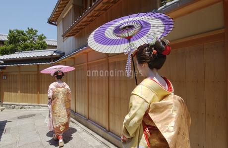 傘と舞妓の写真素材 [FYI01835841]