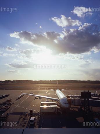 飛行機と朝焼けの写真素材 [FYI01836129]