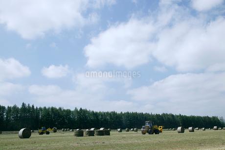 十勝の牧草ロールとフォークリフトの写真素材 [FYI01836741]