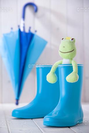 長靴とカエルの人形の写真素材 [FYI01841445]