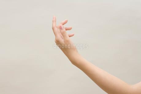 女性の左手の写真素材 [FYI01843155]