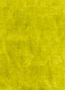 平箔のイラスト素材 [FYI01849174]