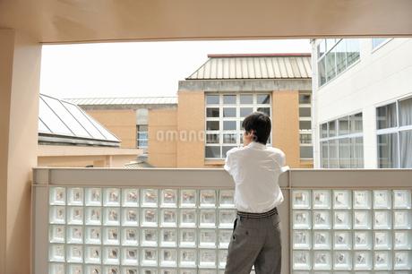 外を眺める男子高校生の写真素材 [FYI01849493]