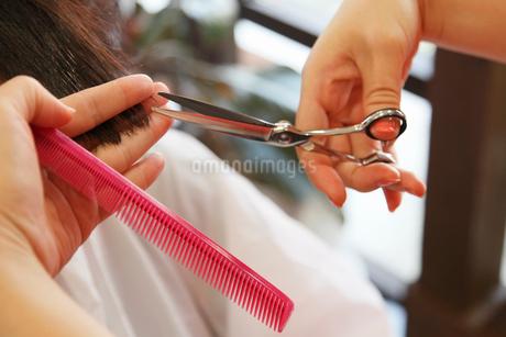 髪をカットする手 美容室の写真素材 [FYI01853905]